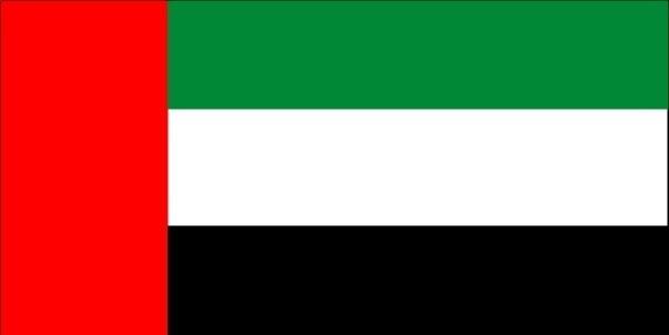 Asia UAE flag.jpg