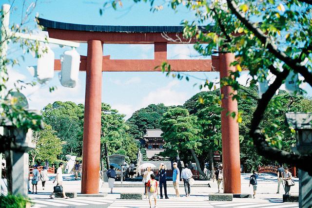 鎌倉鶴岡八幡宮.jpg