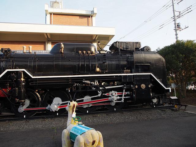 青梅マラソン_青梅鉄道公園.jpg