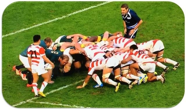 Rugby Scrum 2015 JPN RSA.jpg