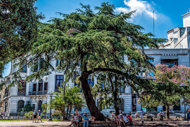 Urguay Montevideo.jpg